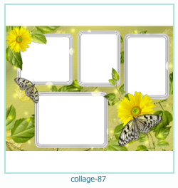 Collage picture frame 87