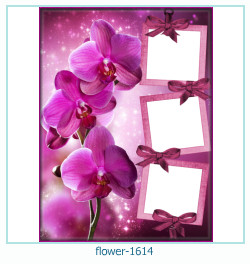 flower Photo frame 1614